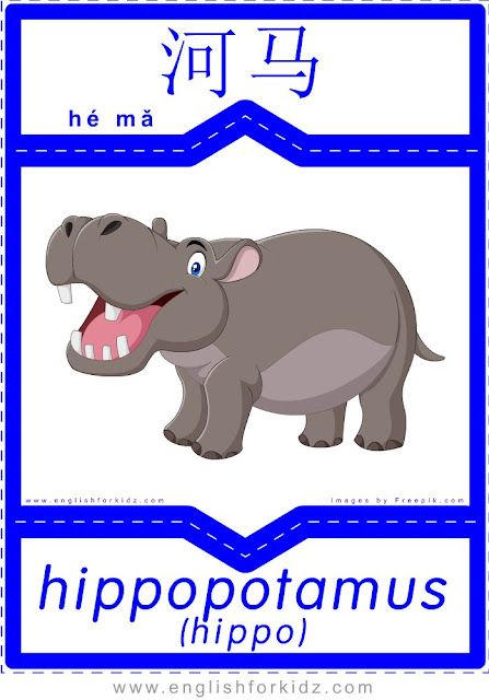 Hippo - English-Chinese flashcards for wild animals topic