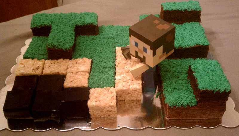 Booger And Pokie Minecraft Birthday Cake