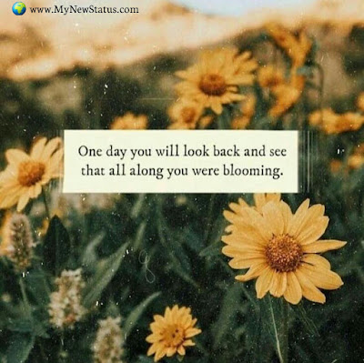 One day you will look back and see that all along you were blooming. #InspirationalQuotes #MotivationalQuotes #PositiveQuotes #Quotes #thoughts