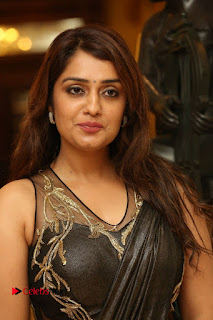 Nikitha Pictures in Saree at Apartment Movie Audio Launch ~ Celebs Next