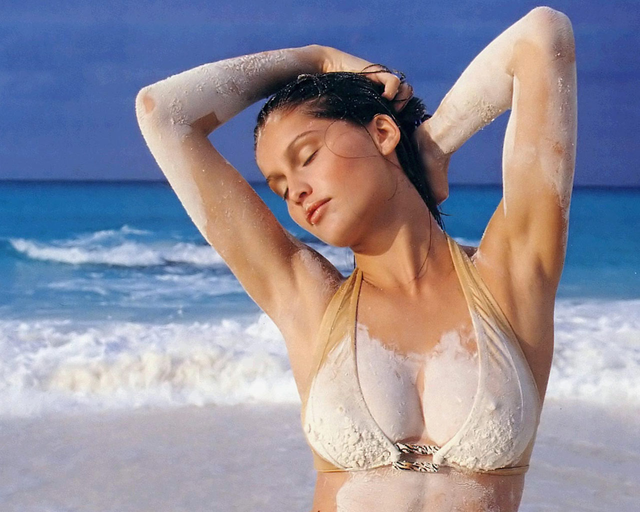 south mp3 songs: Laetitia Casta hot hd wallpapers