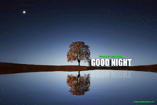 Good Night Message Moon Starts Tree Water Lake Images.