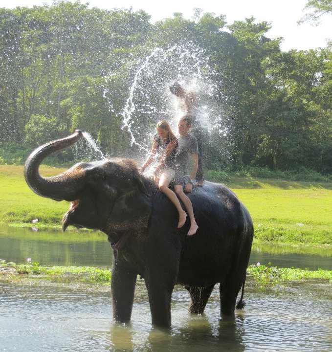 An elephant giving tourists a wash using it's trunk.