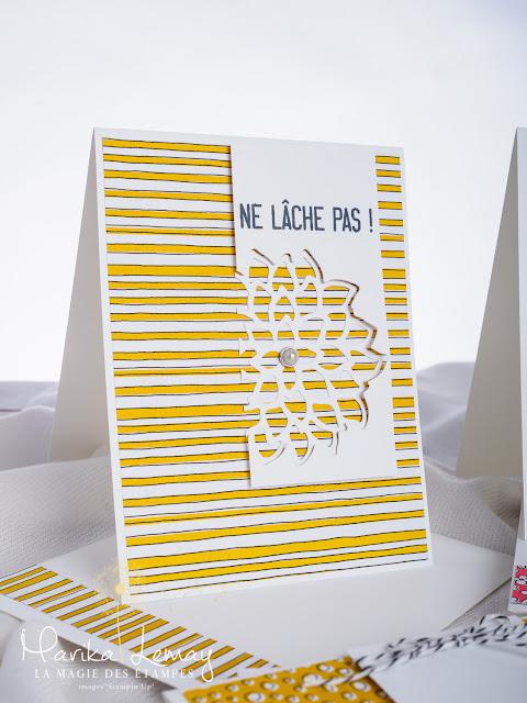 ensemble de cartes réalisées avec les Framelits Fleurs de mai