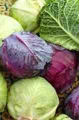 sayur mentah