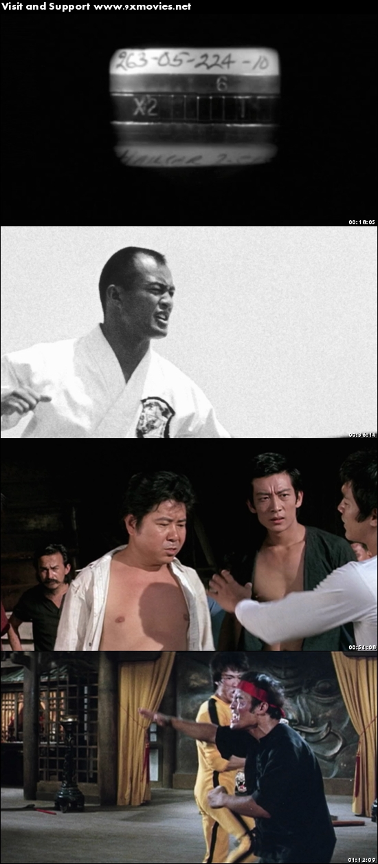 I Am Bruce Lee 2011 Dual Audio Hindi 720p BluRay