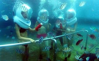 Kami Jual tiket murah untuk Sea Walker di bali tanjung benoa Bali