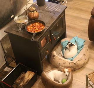 Their preferred spot, as I cook Spicy Pork Pasta