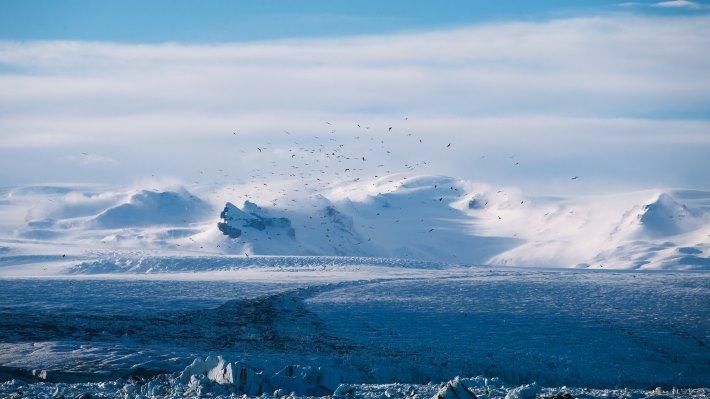 Wallpaper: Winter landscape