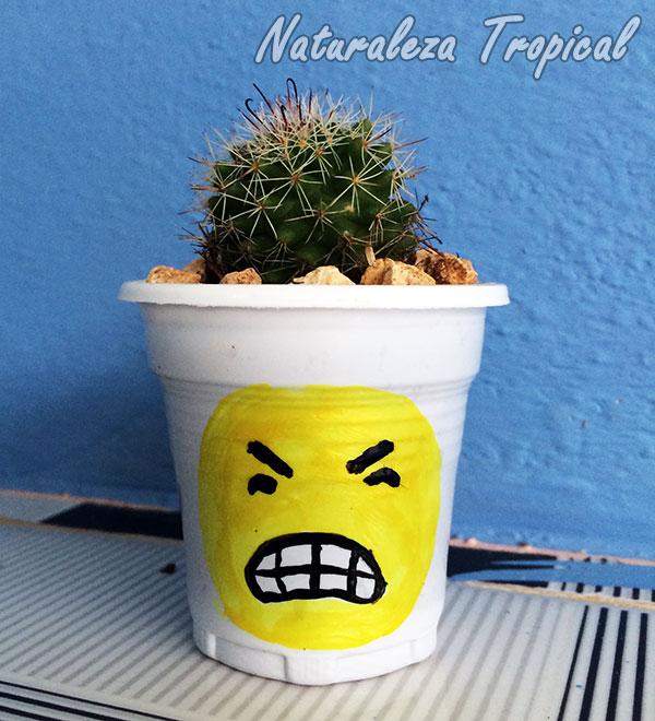 Maceta con emoji enojado y cactus