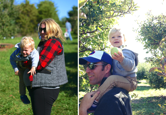 fall 2013 apple picking