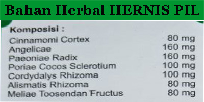bahan kandungan obat hernia herbal