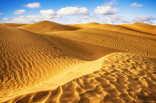 4-Sahara-Desert