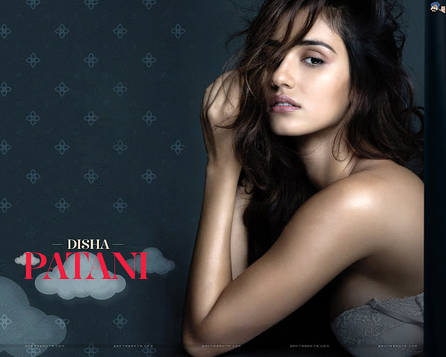 Disha Patani HD Wallpapers