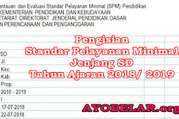 Download Pengisian Standar Pelayanan Minimal (SPM) Pendidikan Jenjang SD Tahun Ajaran 2018/ 2019
