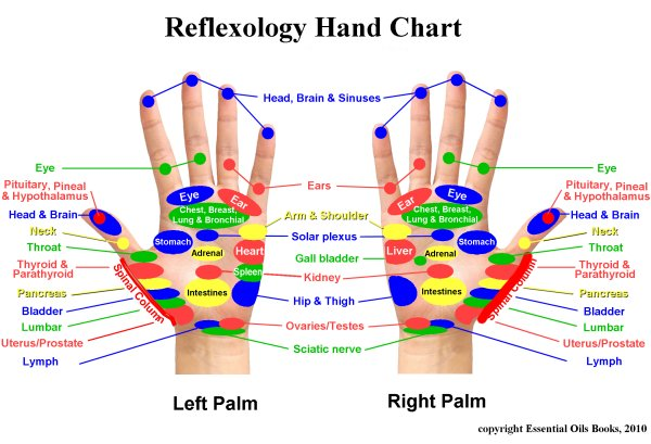 TRANSFORMATIONS LIFE COACHING: Our Feet and Hands ...