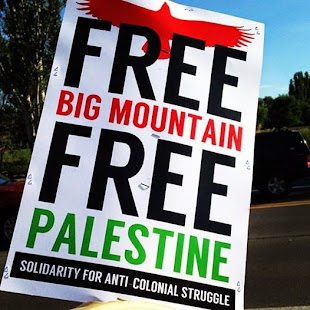 Free Big Mountain! Free Palestine!