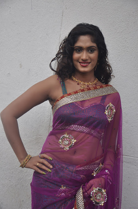 lavanya spicy transparent saree hot photoshoot
