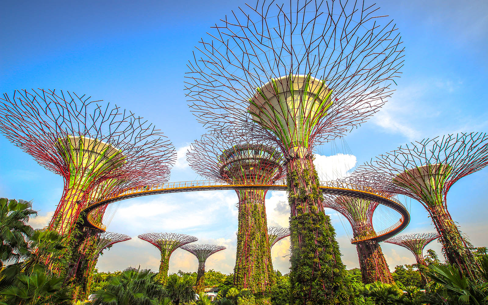 Gardens-by-the-bay-in-singapore
