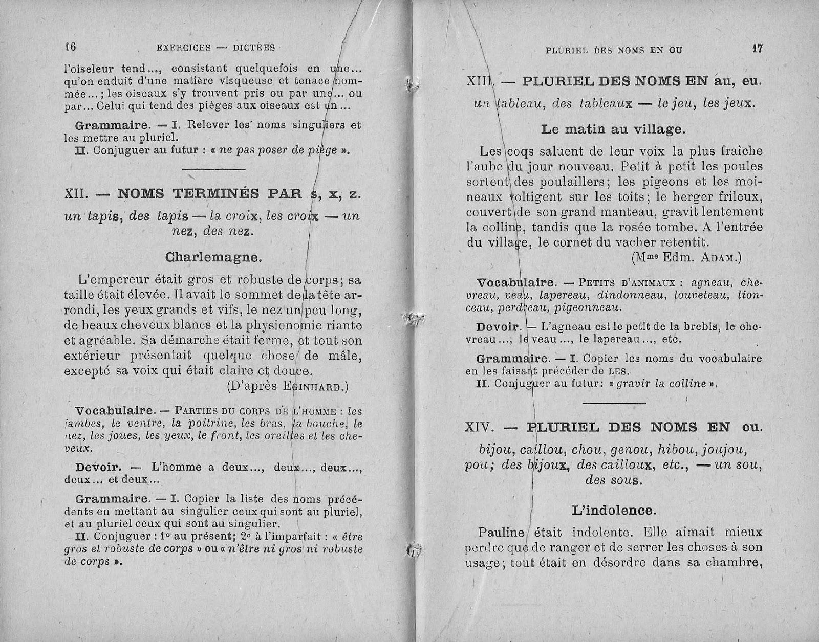 Manuels Anciens David Chabe Exercices Dictees Ce Vocabulaire Devoirs Grammaire Conjugaison Vers 1910