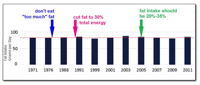 Dietary%2BFat%2BIntake%2Bvs%2BRecommenda