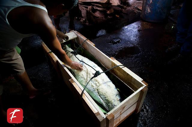Mengintip  Persiapan  Hari Nelayan ke 56 dan Pemecahan Rekor Muri
