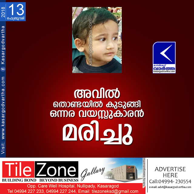 Kerala, kasaragod, news, Death, Food, Child, Baby, Baby dies during the food , Badiyadukka.
