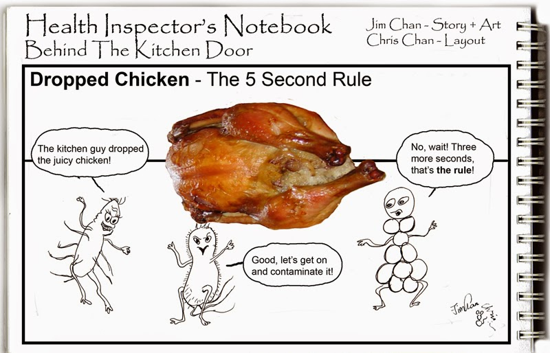 Health Inspector S Notebook The 5 Second Rule Would