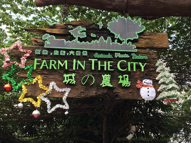 Farm In The City