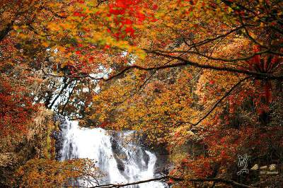 雲森瀑布-3訪