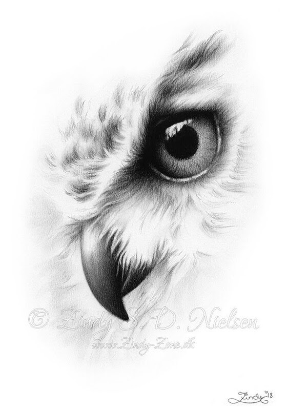 01-Owl-Portrait-Zindy-Nielsen-Fantasy-Animals-Meet-Realistic-Ones-www-designstack-co