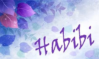 habibi meaning