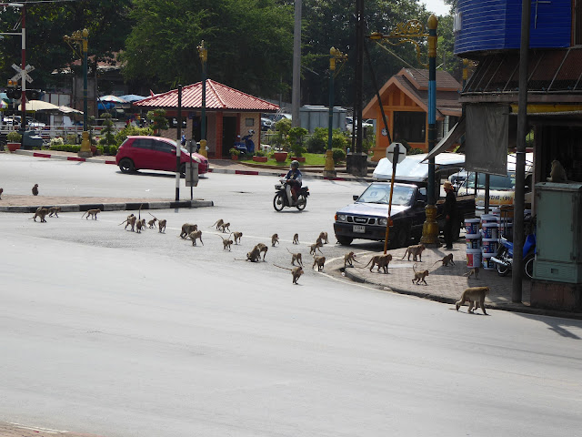 Monos cruzando un paso en la glorieta frente al Prang Sam Yot - Bitácora Vertical