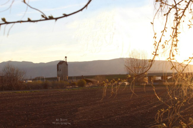 abandoned farm building in the golden glow of the setting sun