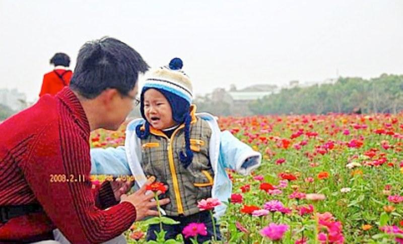 台南花季生產路花海|向日葵、波斯菊|糖廠冰品