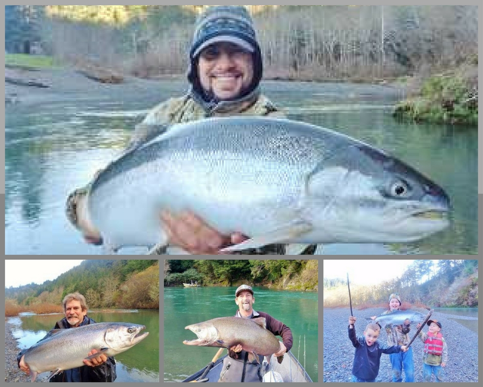 Year round fishing for salmon steelhead on southern for Oregon salmon fishing report