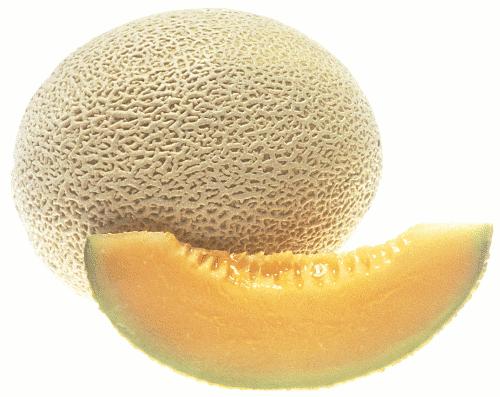 Patwarun Nu Nat Cantaloupe Learn more about the health benefits of this healthful fruit below. patwarun nu nat blogger