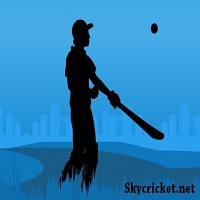 Play Vertical Hit Cricket Game