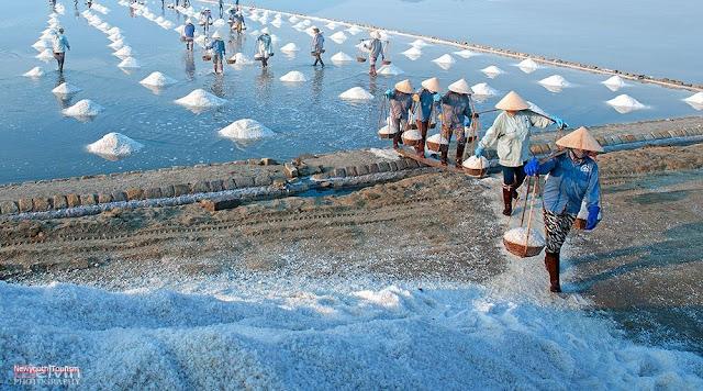The salt fields near Van Phong Bay, Khanh Hoa province 12