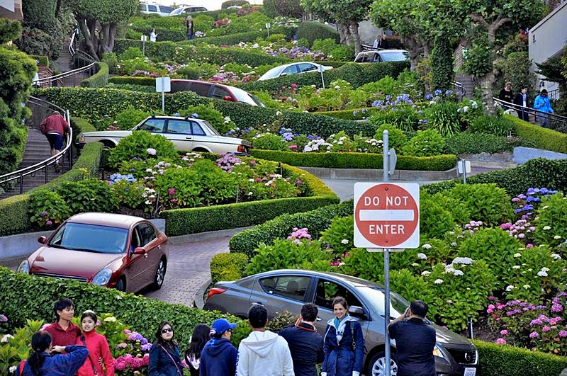 lombard street, lombard street sf, lombard street in san francisco, san francisco lombard street, crooked street in san francisco, crookedest street in san francisco, san francisco street, famous san francisco street, winding road in san francisco, lombard st san francisco, curviest road in san francisco, curvy road san francisco, lombard street san francisco california, lombard street address, san francisco roads, lombard street san francisco ca, lombard san francisco, zig zag road, zig zag road san francisco, famous hill in san francisco, san francisco road, lombard street california, lombard street - crookedest road in the world, lombard road, san francisco hill road, windy road in california