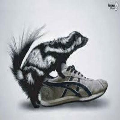 chulé-dos-calçados