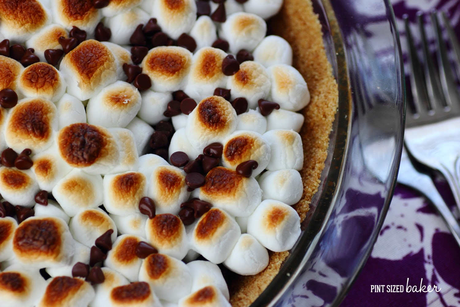 Love s'mores on a summer night? Then you're going to love this Mint Chocolate S'mores Pie with just a few ingredients, it's sure to please the family.