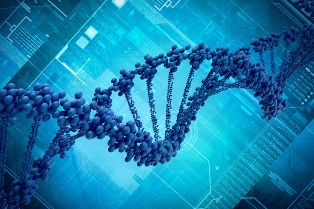 Biotechnology Nigeria
