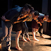 Celebra la Compañía Bruja-Danza sus 15 años con la exposición Movimientos escénicos