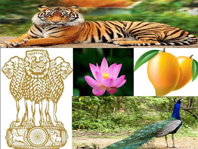 National Symbols of India & Their Scientific name