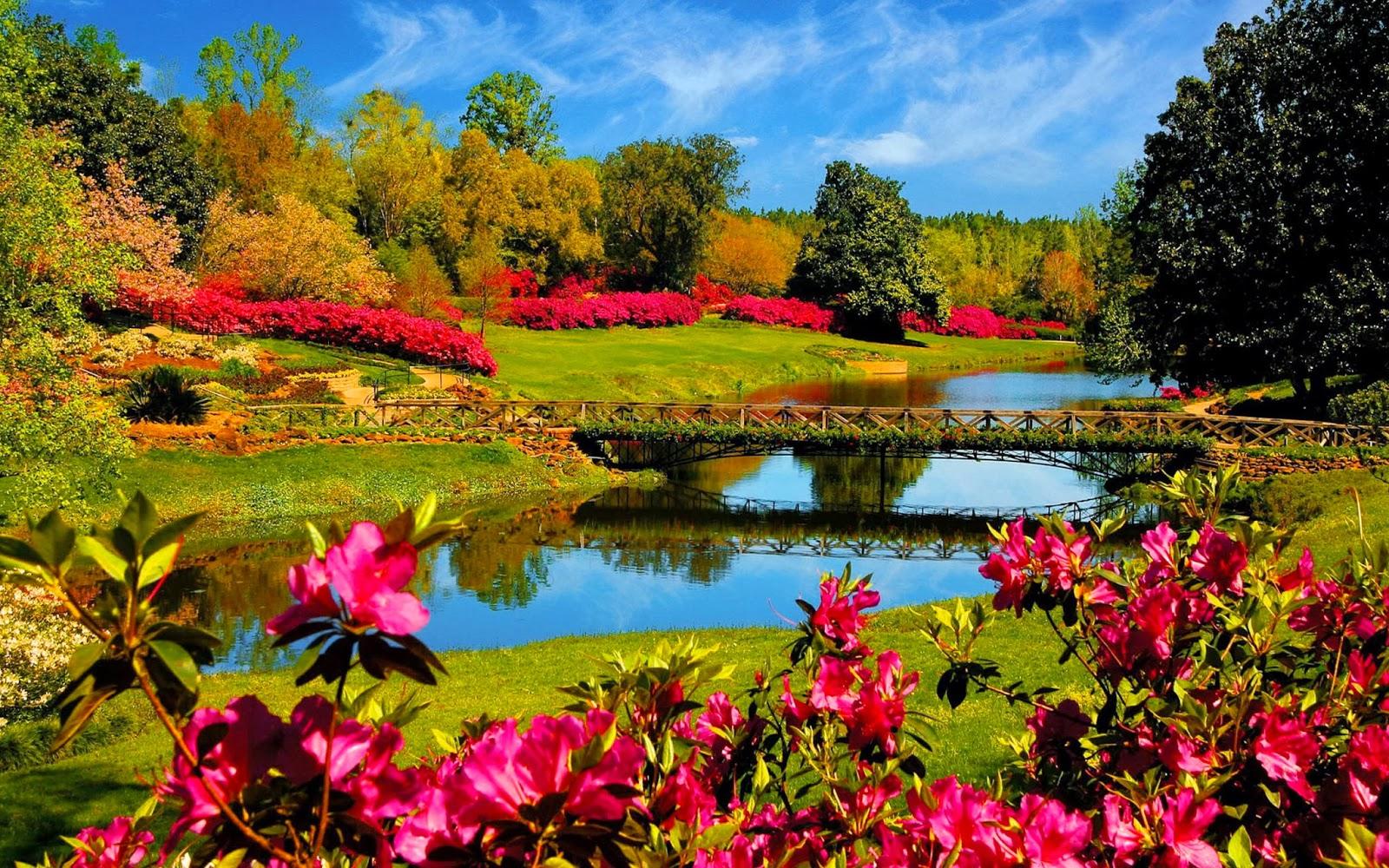 Achtergrond met park met brug, water en bloemen