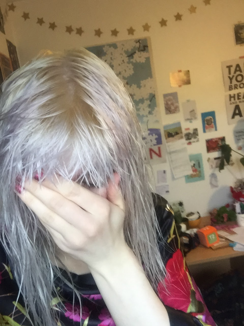 Bleach London Fade To Grey Grey Toner Review And Before And After