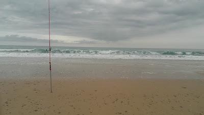 condiciones-mar-pesca-lubina-olas