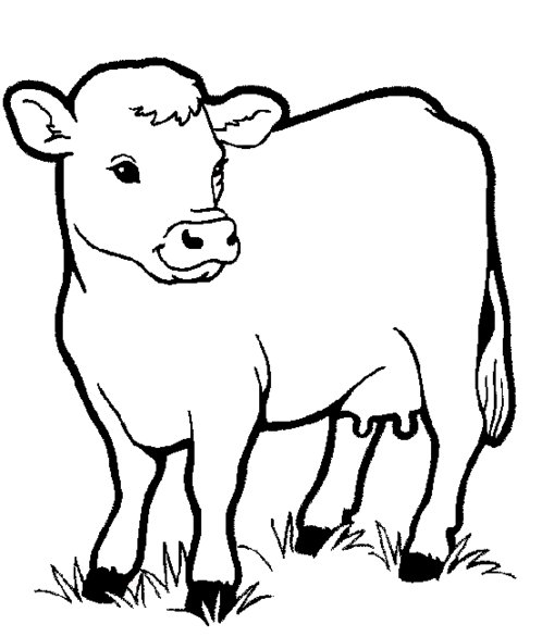 comic barnyard animals coloring pages - photo#7