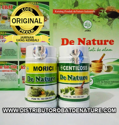 Paket Obat Stroke Herbal
